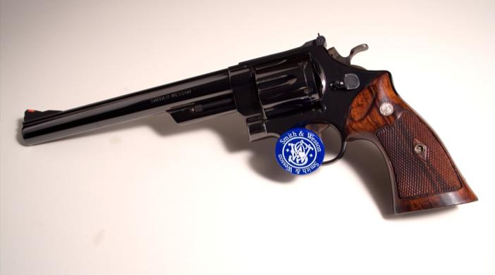 SW-Model-29-American-Firearms